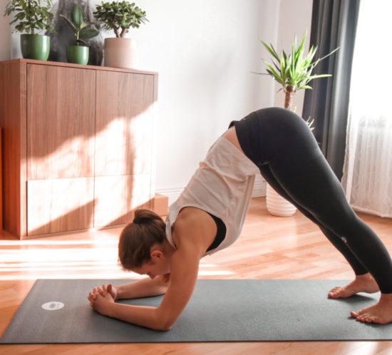 Delfin Yoga